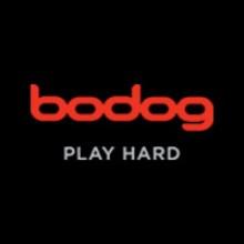 Bodog Recreational Poker Model Explained