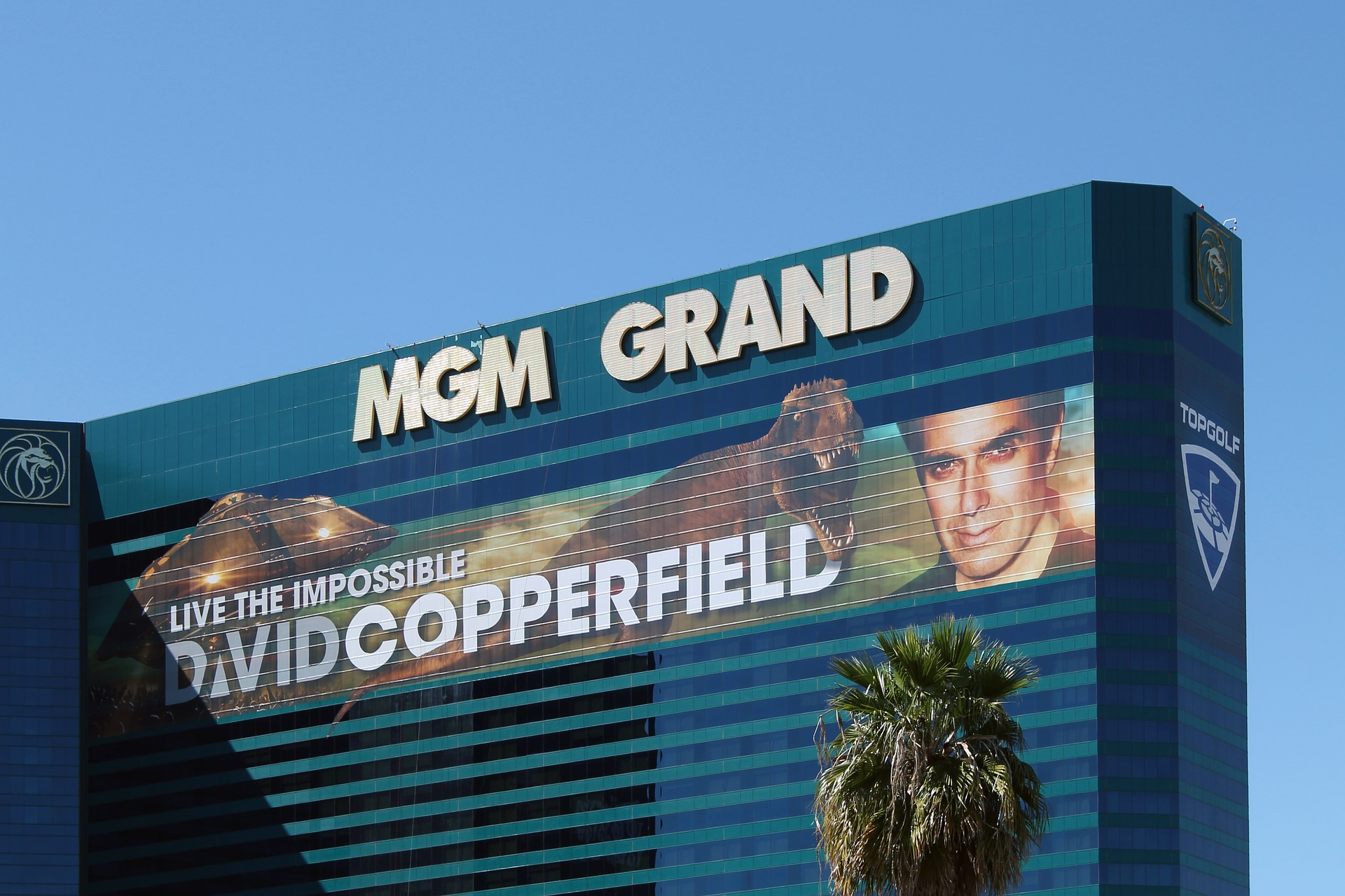 MGM Resorts ready to fight for BetMGM